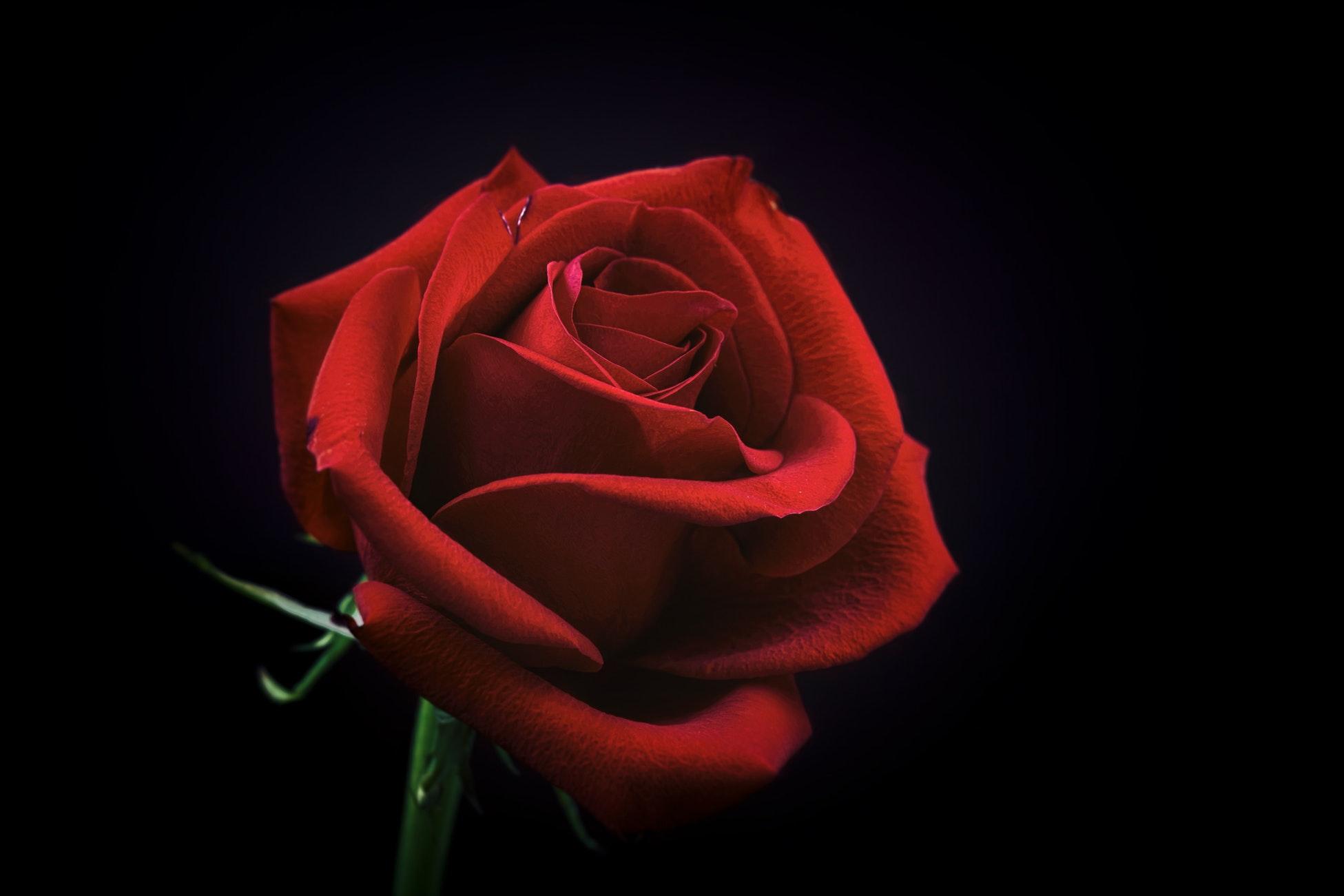 40 beaux poèmes d'amour